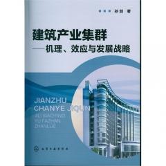 建筑产业集群——机理、效应与发展战略