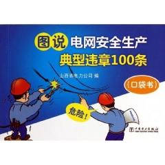 图说电网安全生产典型违章100条(口袋书)