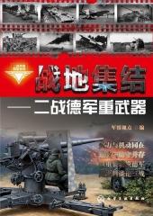 战地集结:二战德军重武器