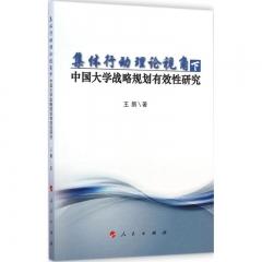 集体行动理论视角下中国大学战略规划有效性研究