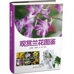 观赏兰花图鉴