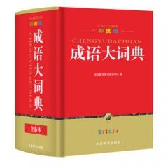 彩图版成语大词典