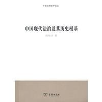 中国现代法治及其历史根基