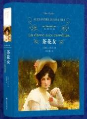 经典译林:巴黎圣母院(第三版)