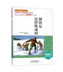 曹文轩推荐系列·语文新课标必读丛书·钢铁是怎样炼成的