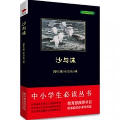 中小学生阅读文库(全新修订版):沙与沫