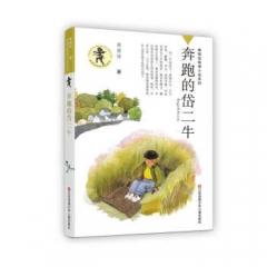 黄蓓佳倾情小说系列--奔跑的岱二牛