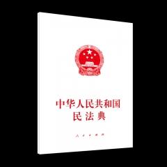中华人民共和国民法典(大字本)