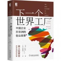 下一个世界工厂:中国企业在非洲的创业故事